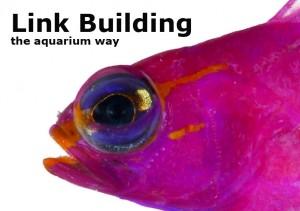 Frontfish