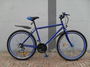 Mountain Bike AD M